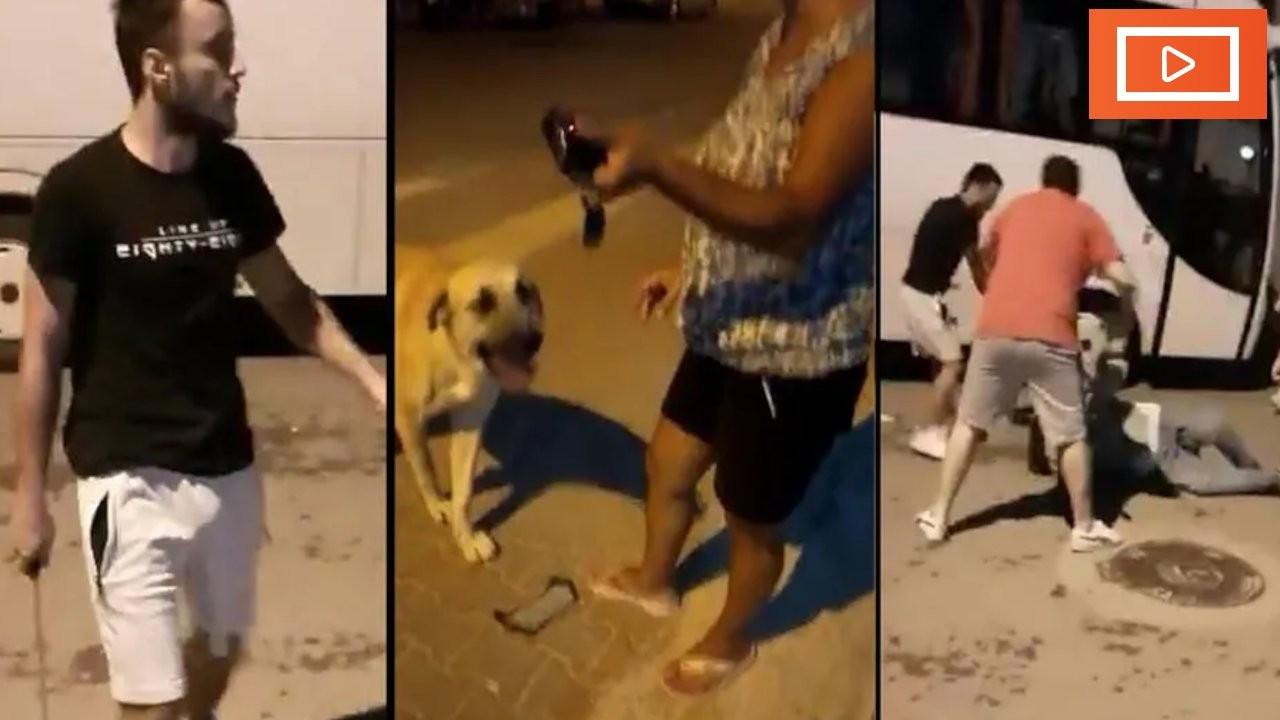 Antalya'da palalı, silahlı evcil hayvan besleme saldırısı