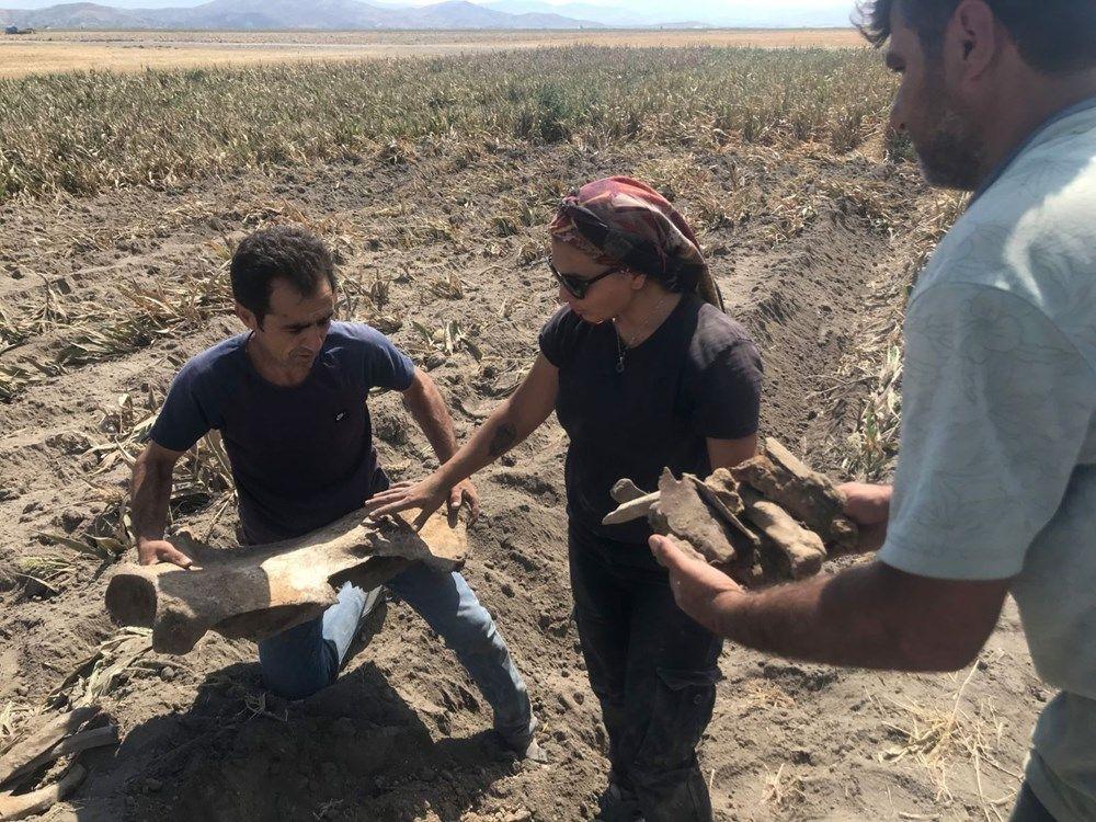 Maraş'ta tarla süren çiftçi fil fosili buldu - Sayfa 1