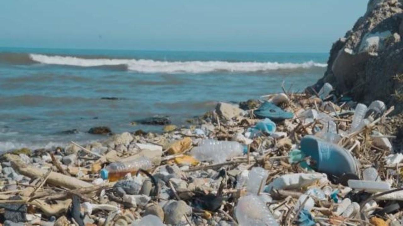 Karadeniz'de kirlilik: 500 metrekarede 2 bin 500 atık