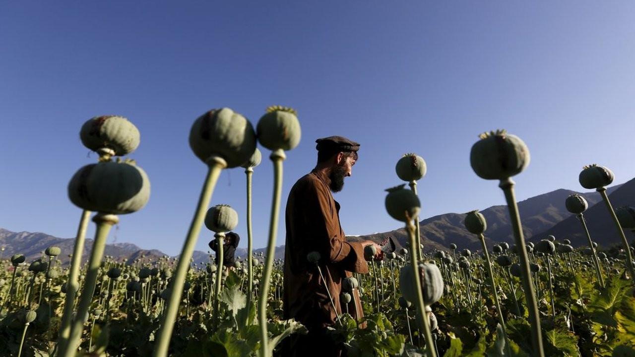 Afganistan çıkışlı 3 ton eroin Hindistan'da ele geçirildi