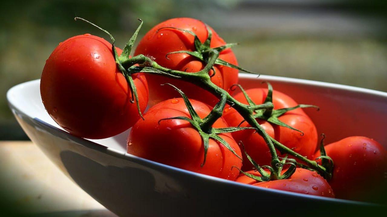 Rusya Türkiye'den gelen domateslerde virüs buldu