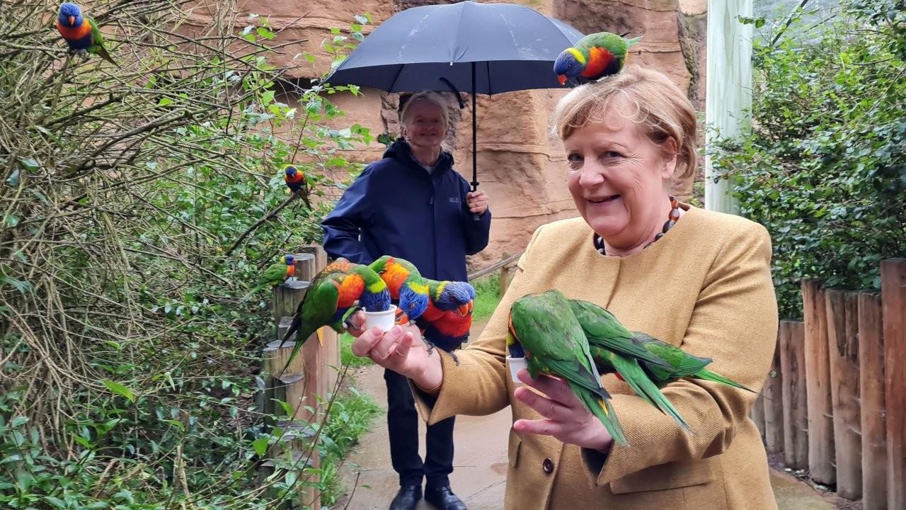 Merkel veda turu sırasında kuşlara uğradı