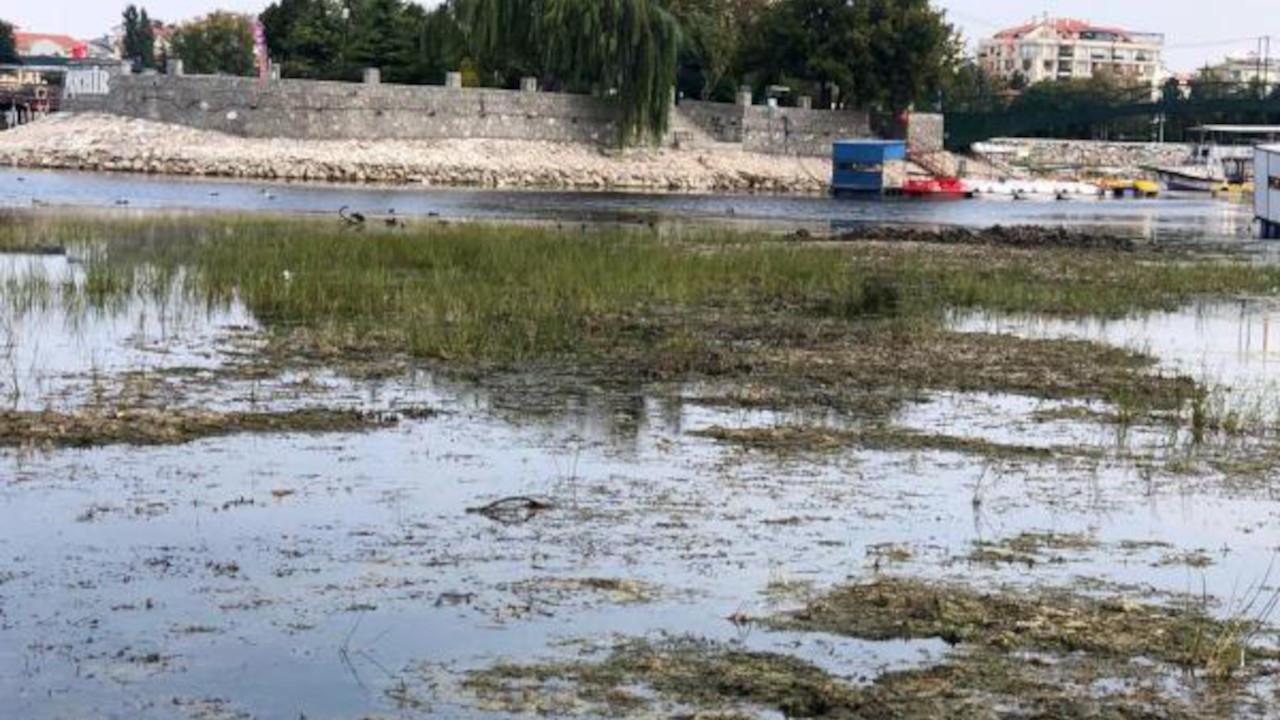 Beyşehir Gölü'nün sazlıkları 'koruma' adı altında kesildi