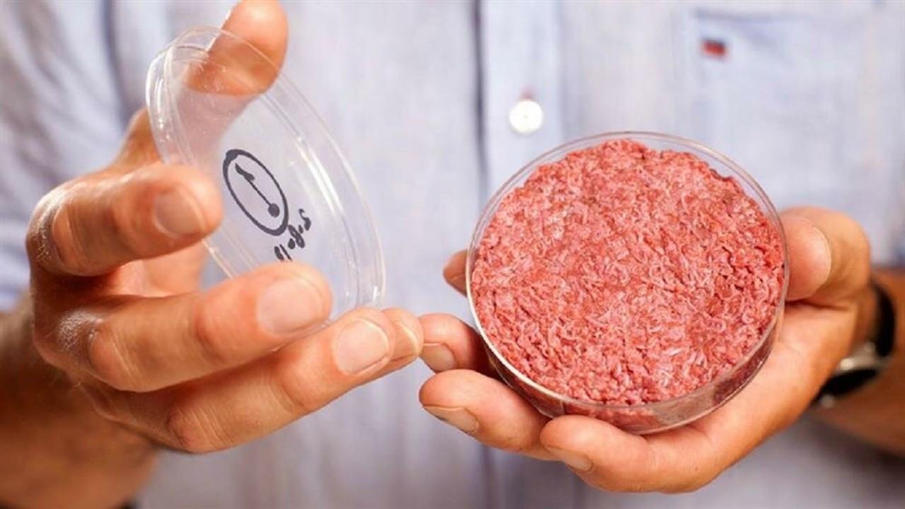 Diyanet: 'Yapay et'e dair bir fetvamız yok