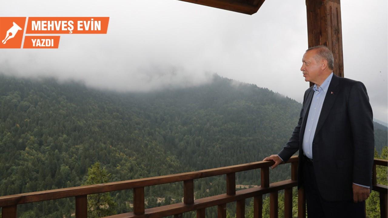 Erdoğan hangi ara 'yeşilci' oldu?