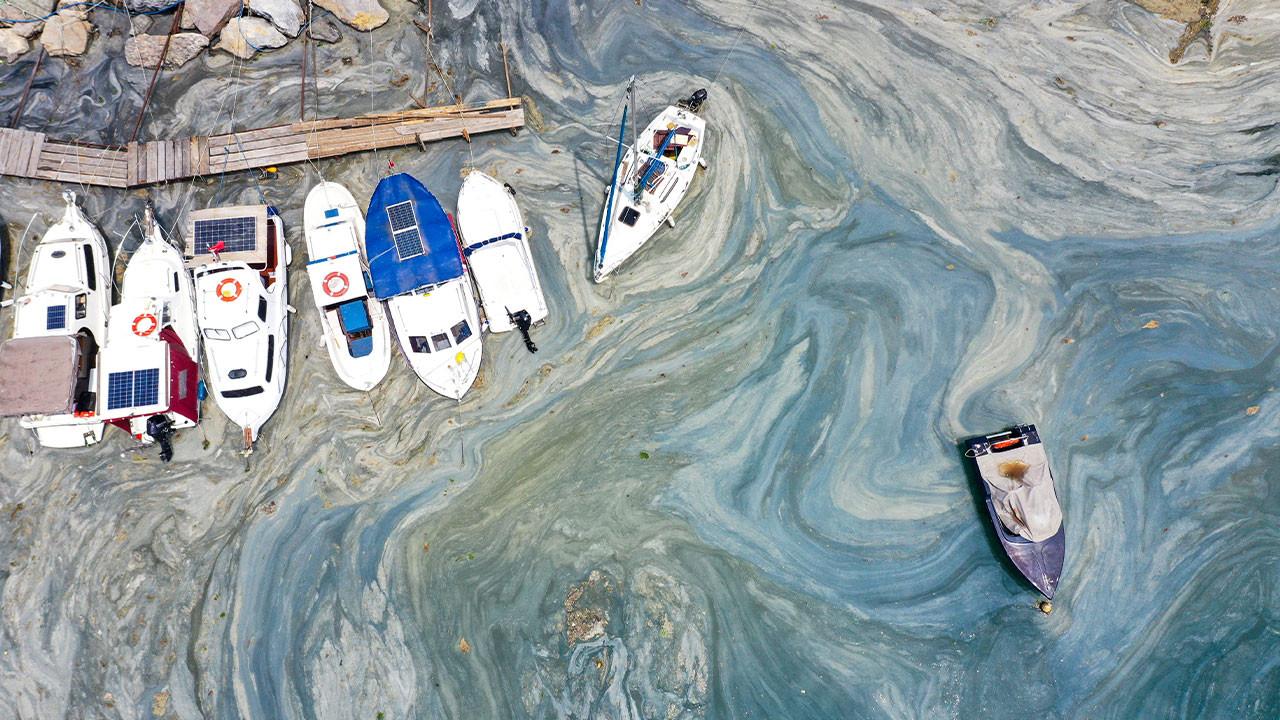 'Ergene Deşarjı devam ederse Karadeniz ve Ege de etkilenecek'