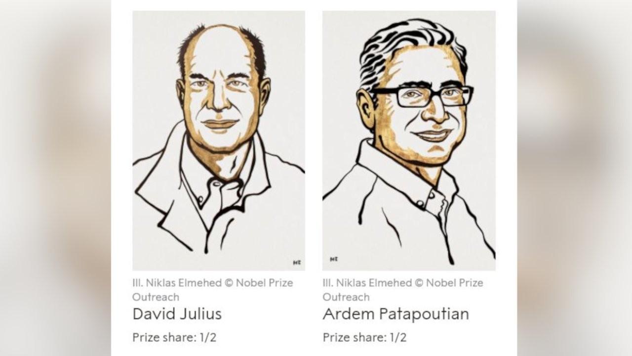 2021 Nobel Tıp Ödülü, David Julius ve Ardem Patapoutian'a verildi