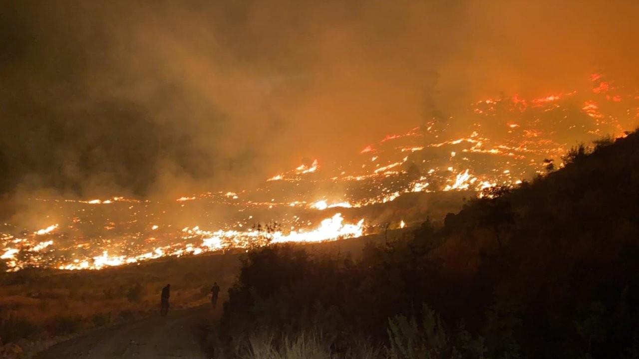 Muğla'da orman yangını: 50 hektarlık alan zarar gördü