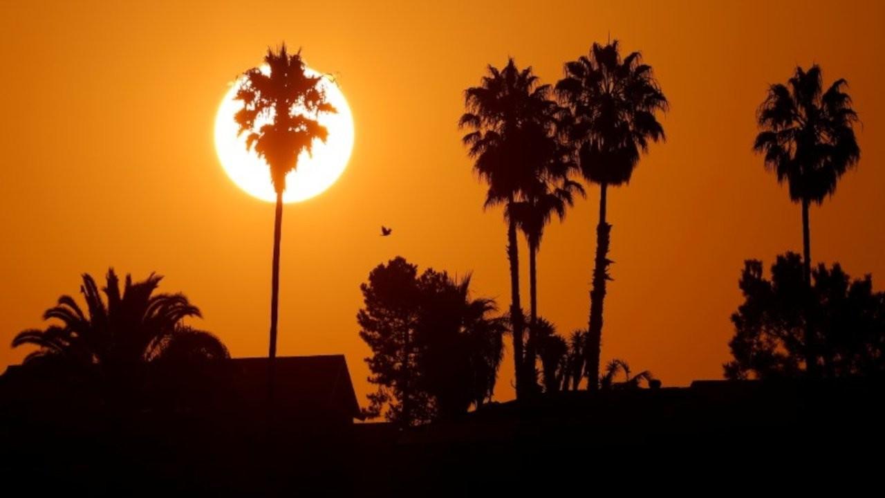 Kentlerde aşırı sıcaklık tehdidi 1980'lerden bu yana üçe katlandı