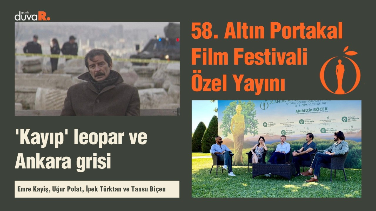 'Kayıp' leopar ve Ankara grisi
