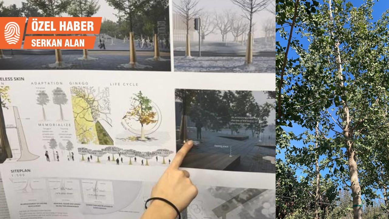 10 Ekim Anıtı'nın 'Mabet ağaçları' katliam alanına yerleştirilecek