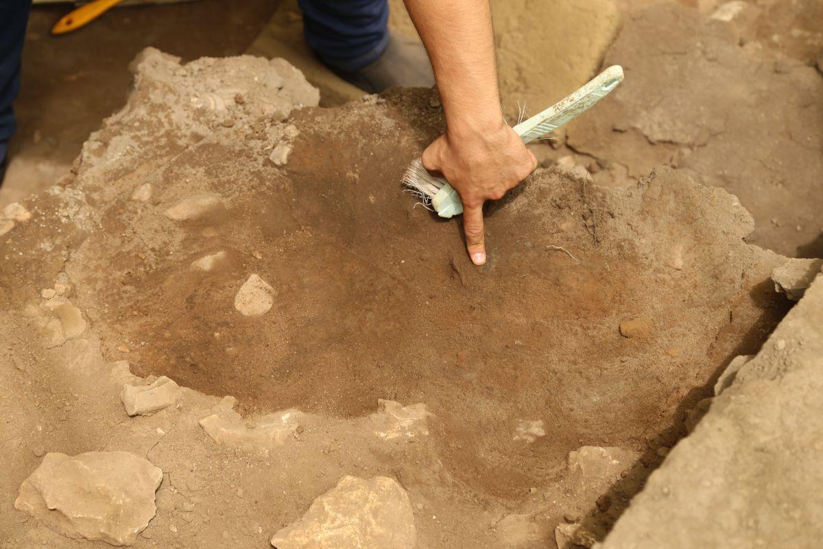 Direkli Mağarası'nda 14 bin 500 yıllık tarım aletleri bulundu - Sayfa 2
