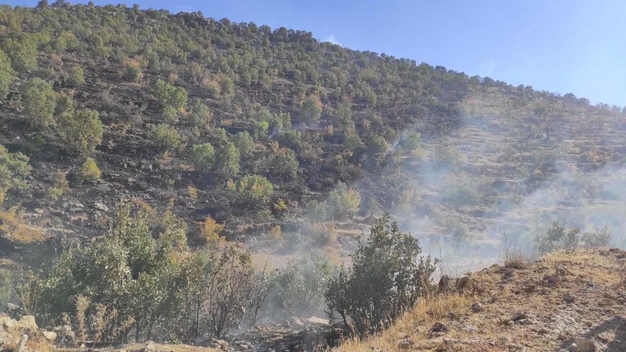 Batman'da yangın: 250 dönüm ağaçlık alan zarar gördü