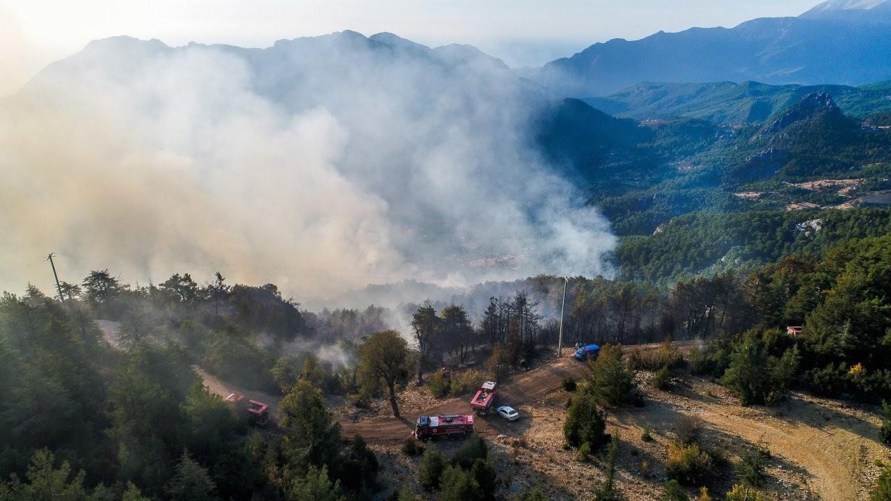 Antalya'da ormana düşen yıldırım yangın çıkardı