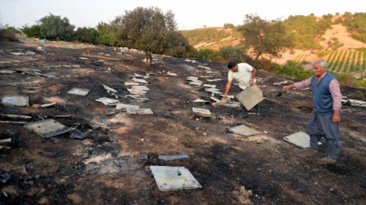 Mersin'de yangın: 5 milyon arı öldü