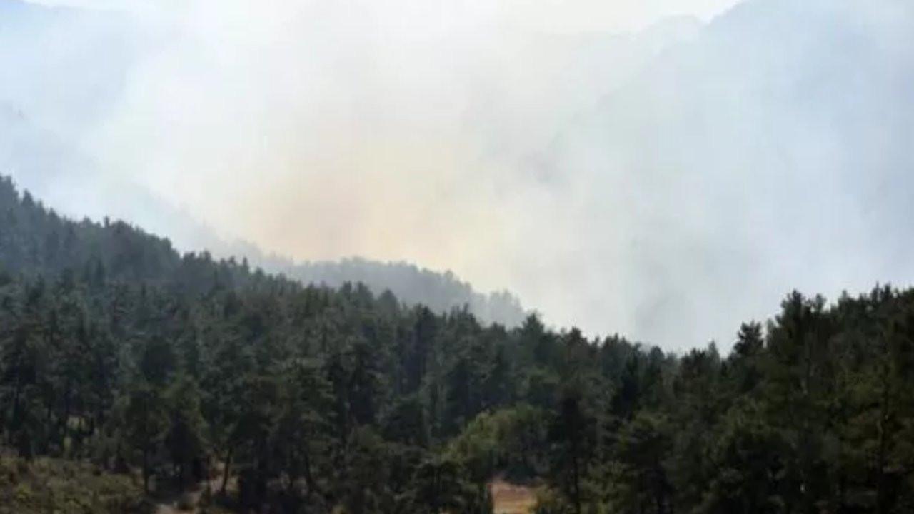 Antalya'da orman yangını: Karadan ve havadan müdahale sürüyor