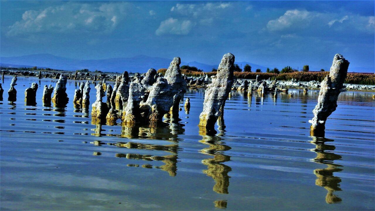 Van Gölü'nde mikrobiyalit uyarısı: Yok oluyorlar