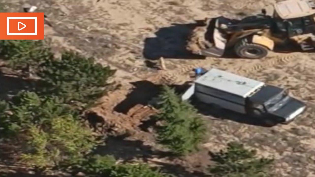 Konya'da belediye personeli onlarca köpeği diri diri gömdü